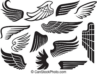 (set, ailes, collection, wings)