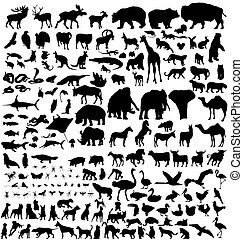 silhouettes, animal, collection