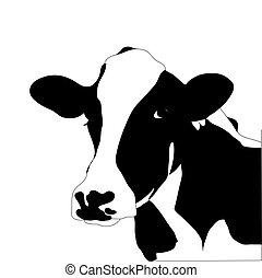 vache, grand, vecteur, noir, portrait, blanc