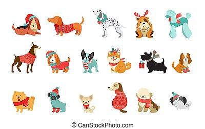 vecteur, graphique, animaux familiers, chandails, mignon, écharpes, aimer, noël, chiens, illustrations, accessoires, éléments, joyeux, collection, chapeaux, tricoté