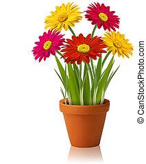 vecteur, printemps, fleurs fraîches, couleur