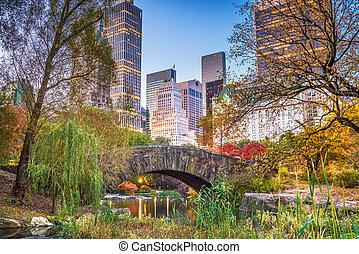 ville, central, automne, parc, york, nouveau