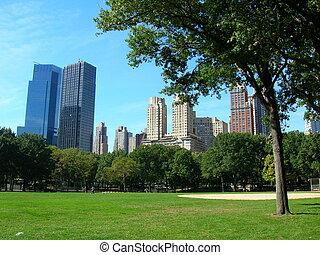 ville, central, ensoleillé, parc, jour, york, nouveau
