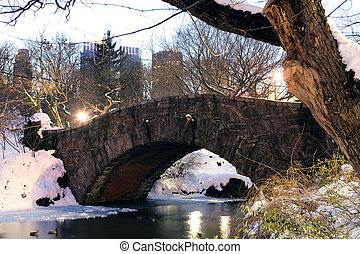 ville, central, hiver, parc, york, nouveau, manhattan