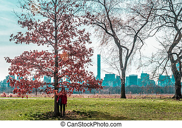 ville, parc central, arbres, york, devant, nouveau, girl, manhattan