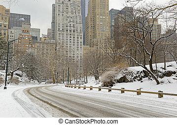 ville, parc central, neige, york, nouveau