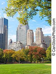 ville, parc central, york, feuillage, nouveau