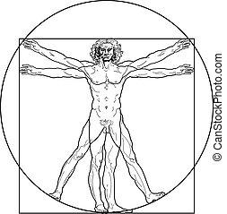 vitruvian, (outline, version), homme