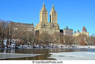york., nouveau, park., central, hiver